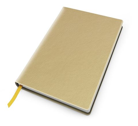 Picture of Metallic Leather Look A5 Casebound Notebook
